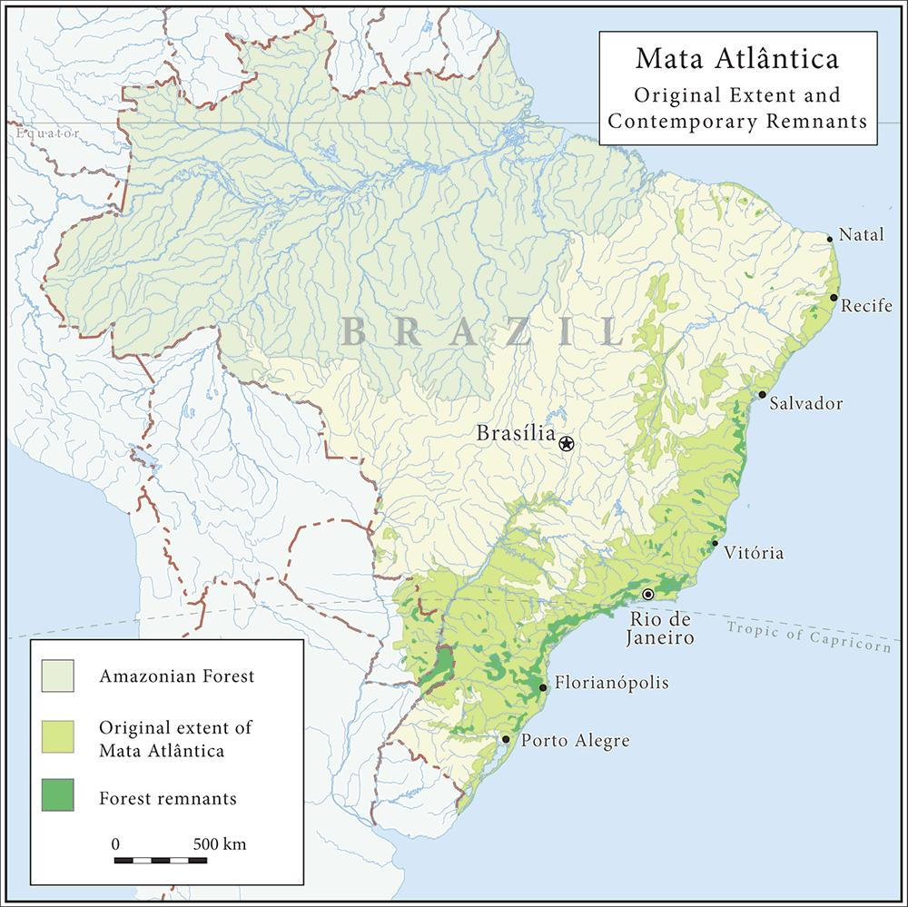 ブラジル大西洋岸森林(マタ・アトランティカ)地図