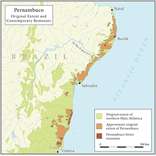 Map 2. Pernambuco growth